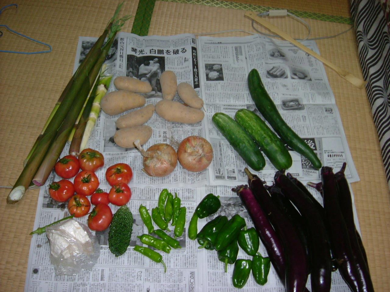 もらってきた野菜たち